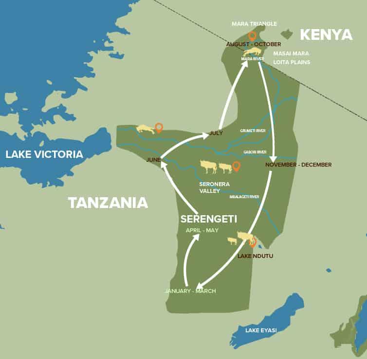 Mapa de la migración