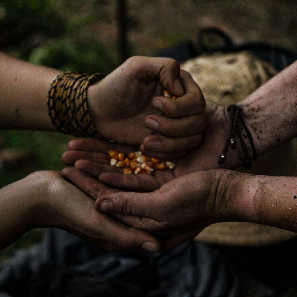 cultura amazónica