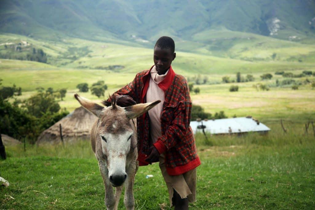 Meet the local people of Lesotho on a horseback trek
