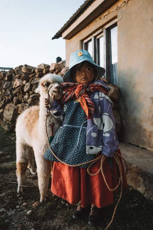 Young Peruvian child with her Alpaca.