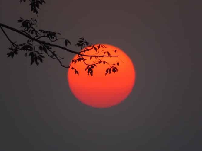 India night sky at safari