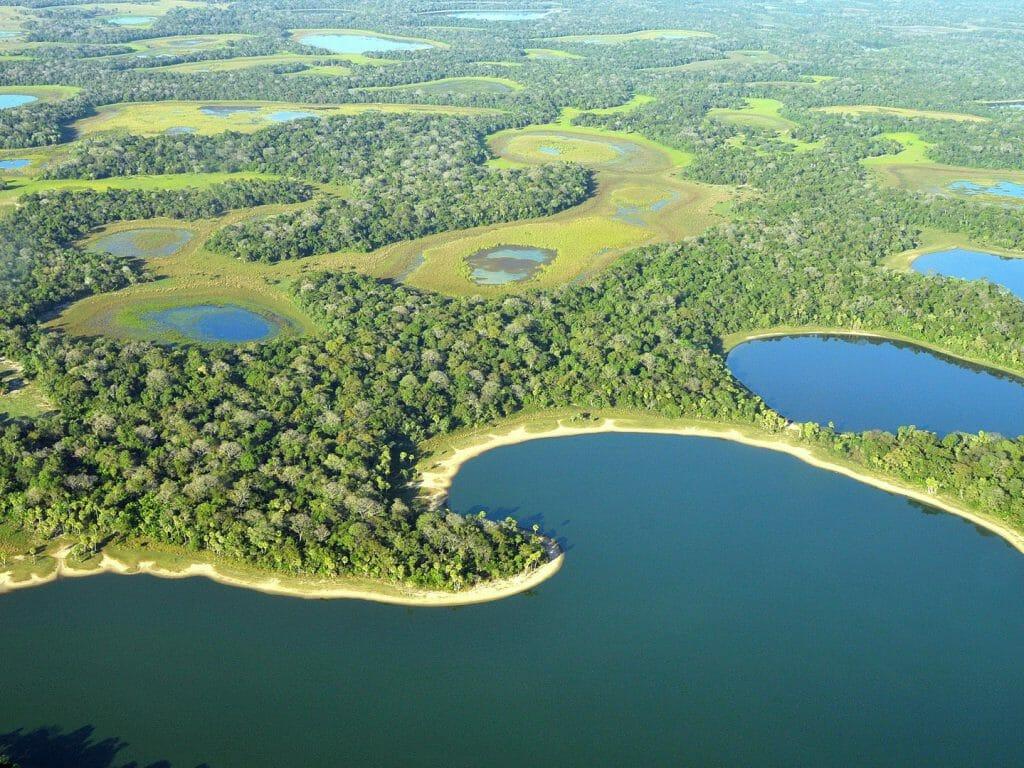 siehe Jaguare Caiman Ökologisches Reservat, südliches Pantanal, Brasilien