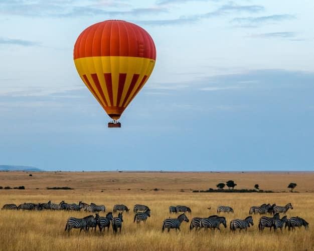 visit africa to see wildlife