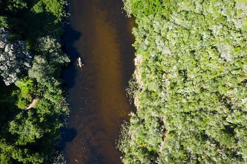 Las 10 mejores ideas para ver la canoa de la vida silvestre