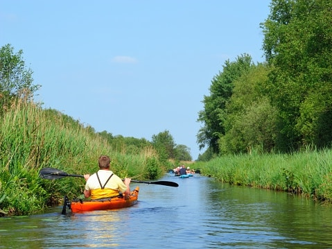 Top 10 ideas to see wildlife canoeing with wildlife