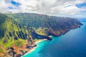 Wildlife in Hawaii