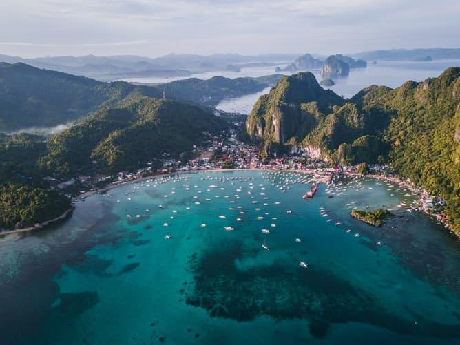 wildlife in asia: philippines