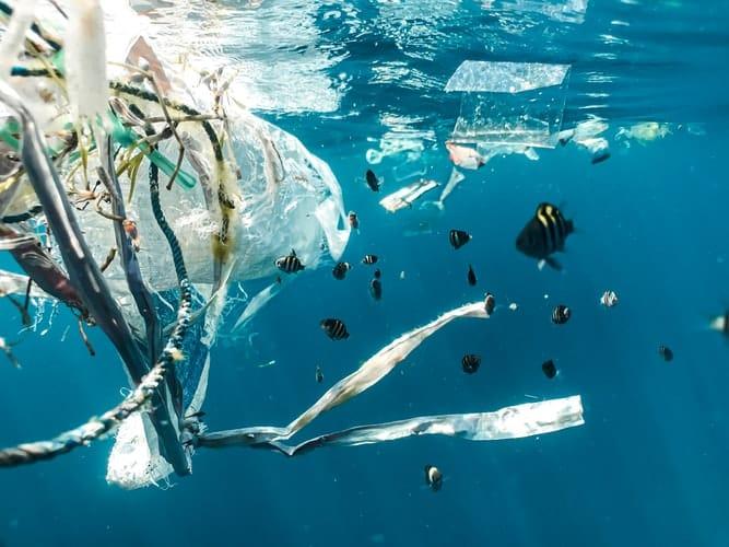 Nachhaltiger leben: Weg mit dem Plastik